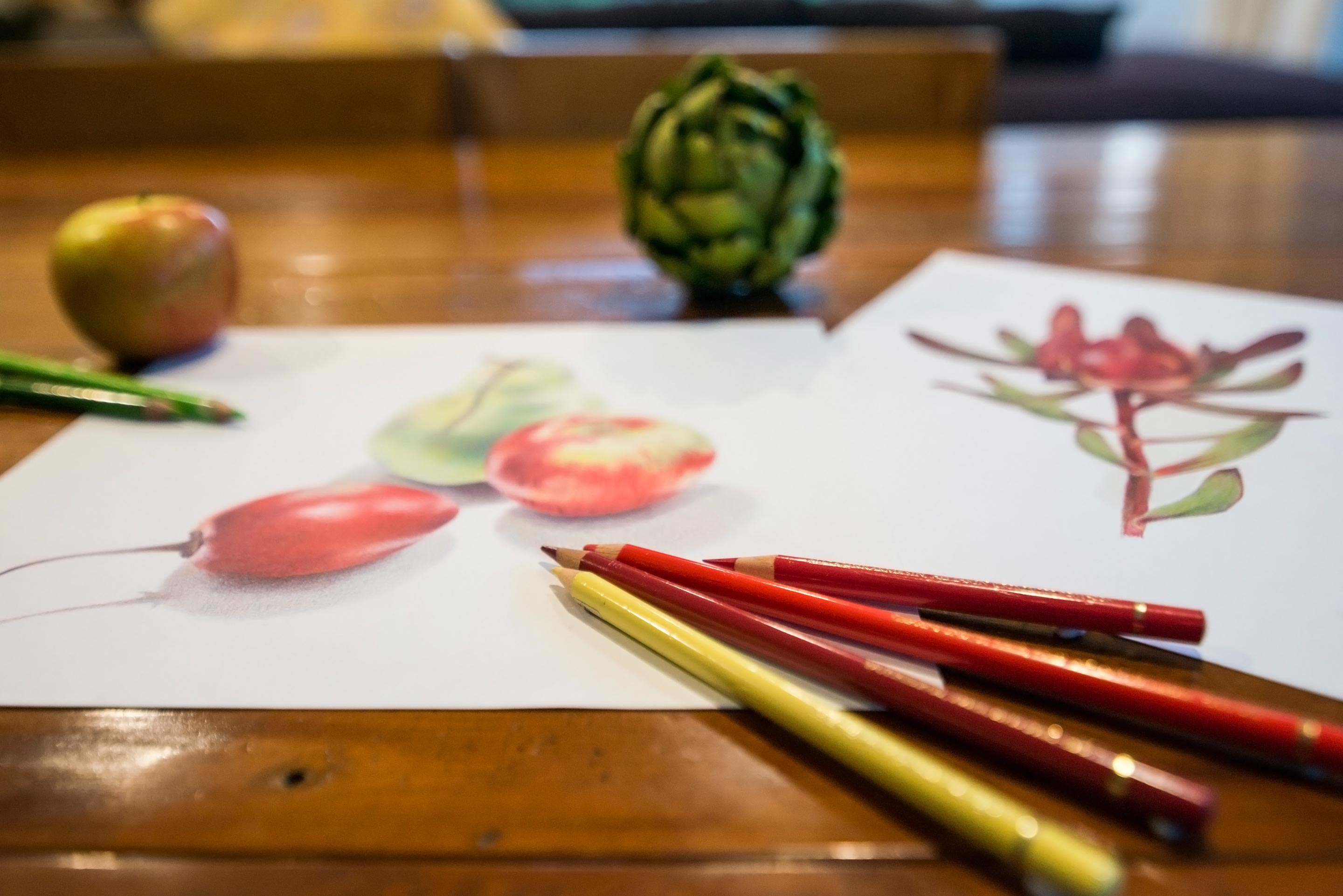 Learn how to draw with pencils